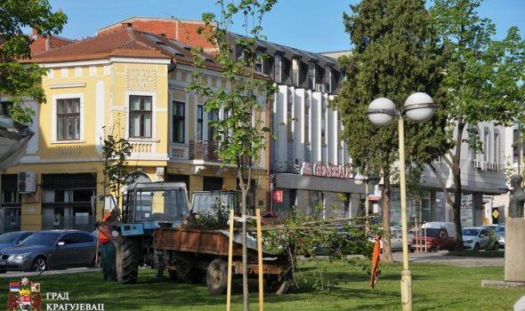 Sređivanje grada u toku: Krpe se rupe, uređuju travnjaci, sadi se cveće (FOTO)