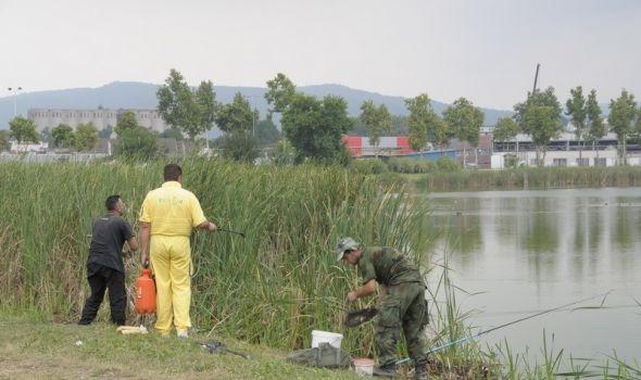 Akcija suzbijanja larvi komaraca na teritoriji Kragujevca