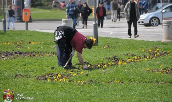 Prolećno uređenje grada: Kompletiranje javne rasvete u Šumaricama, remont česme kod Zelengore
