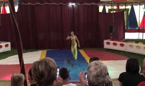 Zabava starija od nove ere: CIRKUS je ponovo u Kragujevcu, mališani oduševljeni