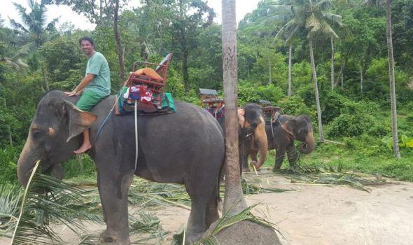 Ćuretove pustolovine po Indokini - osmi deo (FOTO)