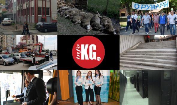 InfoKG 7 dana: Nezaposleni, ovce, Zastava oružje, eKG, DATA centar...