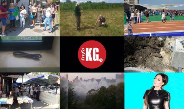 """InfoKG 7 dana: Privatni vrtići, arheolozi, nova škola, zmije, granata, """"fontana"""", Ceca…"""