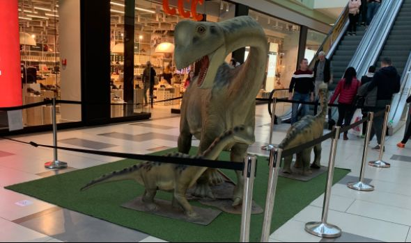 """EVOLUCIJA: Izložba dinosaurusa u """"Plazi"""" (FOTO)"""