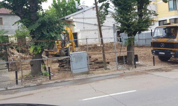 """Odoše borovi, ode kuća Đure Jakšića: """"Mera našeg patriotizma..."""" (FOTO)"""