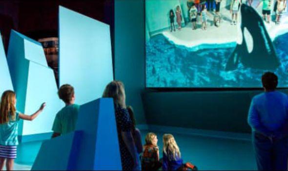 """Istraži svet Nacionalne geografije u """"Plazi"""": Interaktivna 3D postavka """"Proširena stvarnost"""" (VIDEO)"""