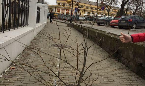 Nova RUPA, nova muka: Humorom protiv PROPADANJA građana i Grada (FOTO)