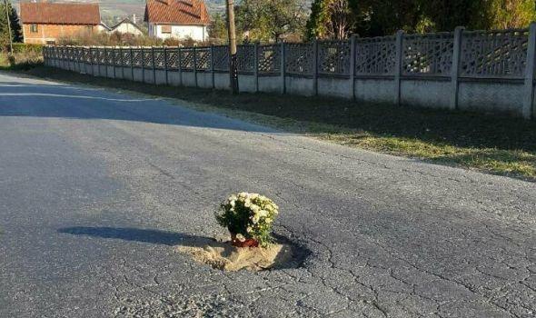 I kad je muka, duhovitost ne izostaje: Udarnu rupu ukrasili saksijom cveća