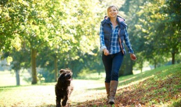 Evo zašto je svakodnevna šetnja dobra za vas