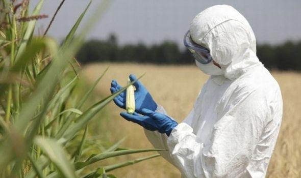 Tribina u Kragujevcu: Kako o(p)stati bez GMO?