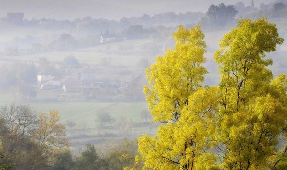 Velike Pčelice – selo sa tri manastira (FOTO)