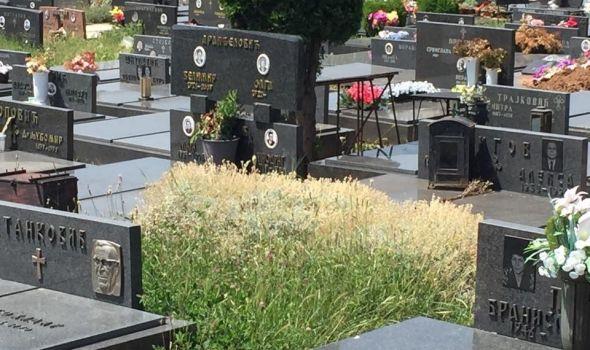 Sniženje na Gradskim grobljima