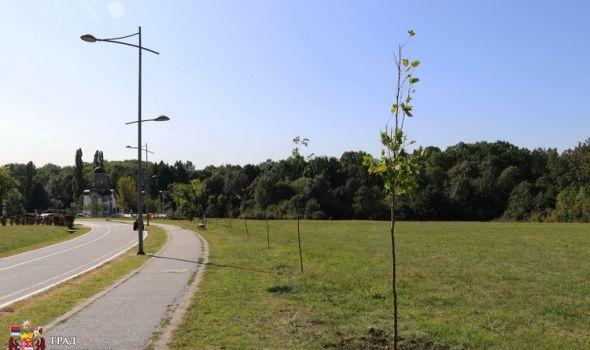 Zasađeno drvo mira: Stradalnička istorija ne sme se ponoviti (FOTO)
