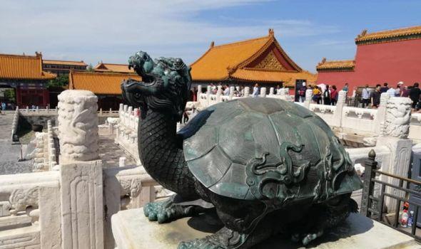 Ćuretove pustolovine: MOJA KINA tokom Svetskog prvenstva u košarci (Deveti deo)