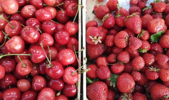 Analizirana ispravnost sezonskog voća sa pijace