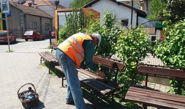 Košenje, krčenje rastinja, sadnja stabala i cveća: Da li je vaše naselje u planu? (FOTO)